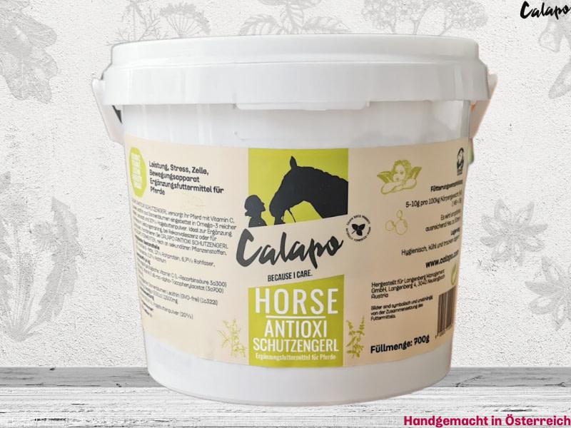 Calapo-Horse-Antioxi-Schutzengerl-Naturprodukt-Zellschutz-–-Antioxidantien-Lecithin-und-Omega-3-versorgen-Pferde-mit-erhoehtem-Naehrstoffbedarf
