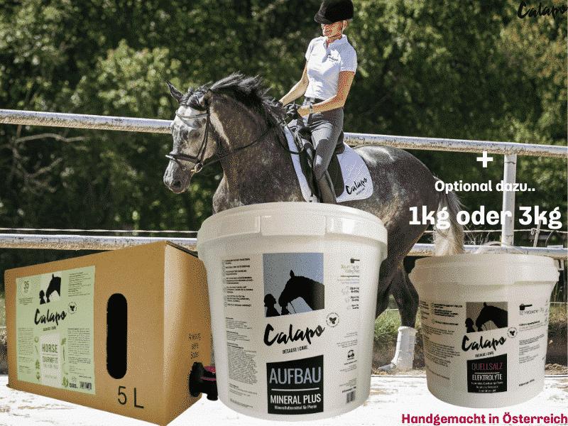 CALAPO GRUNDVERSORGUNGSPAKET HORSE AUFBAU+