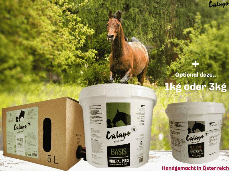 CALAPO GRUNDVERSORGUNGSPAKET HORSE BASIS