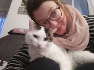 Findelkinder – Jungkatzen, Immunsystem