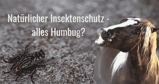 Natürlicher Insektenschutz – alles Humbug?