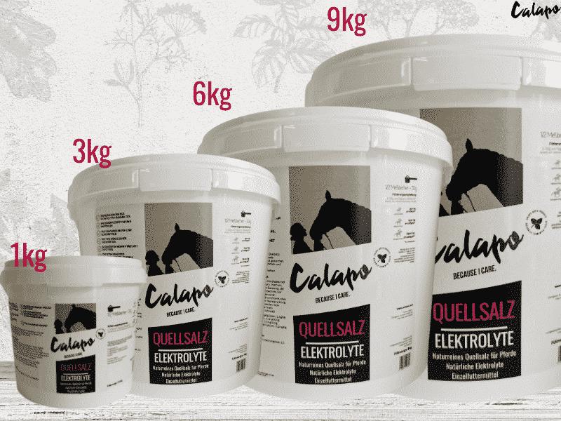 CALAPO ELEKTROLYTE – Quellsalz für Pferde