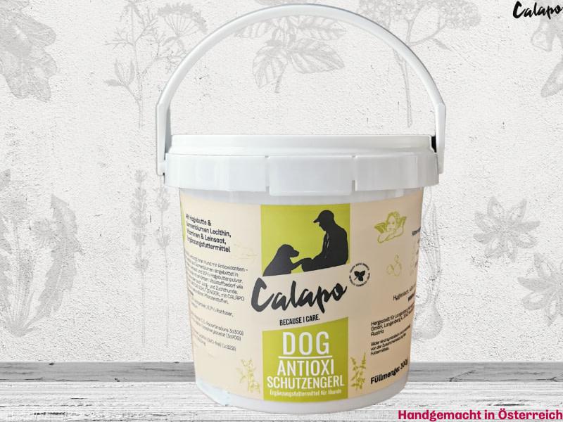 Calapo Dog Antioxi Schutzengerl Naturprodukt, Zellschutz – Antioxidantien, Lecithin und Omega 3 versorgen Hunde mit erhöhtem Nährstoffbedarf