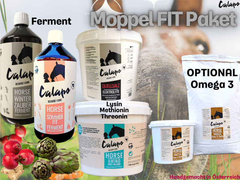 CALAPO MOPPEL FIT PAKET