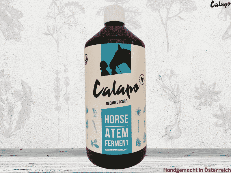CALAPO HORSE ATEM FERMENT