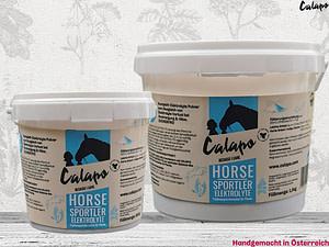 Horse Sportler Elektrolyte