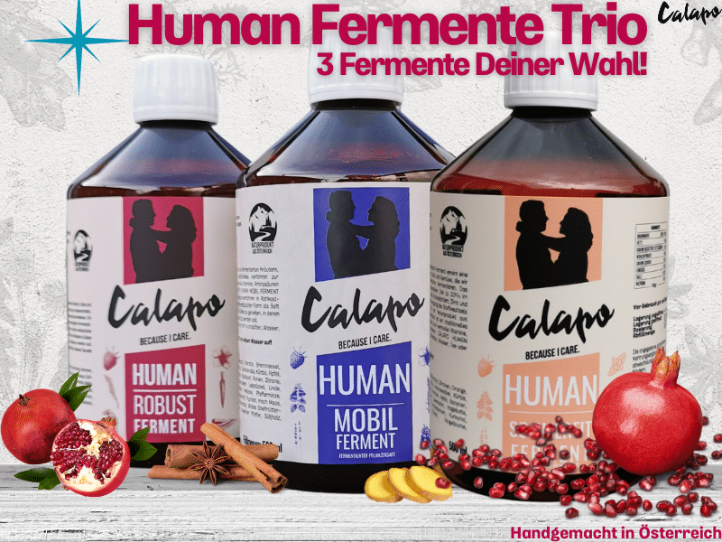 CALAPO HUMAN FERMENT TRIO