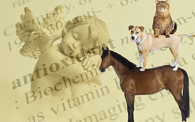 Zellschutz für Tiere: Vitamin E, C & Lecithin